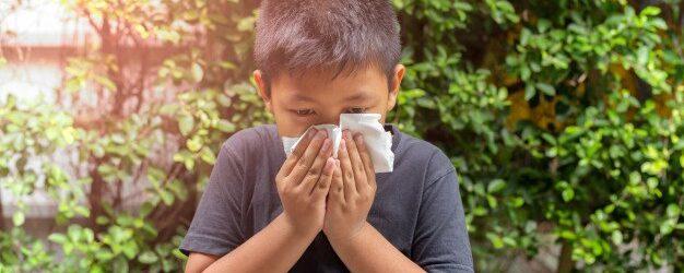 Comment combattre les virus d'été?