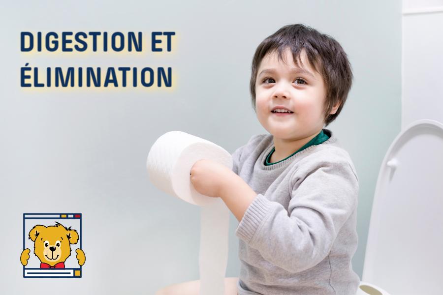 Digestion - élimination - Académie Capucin